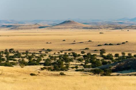 sergio-pitamitz-palmwag-concession-damaraland-namibia_a-G-12824514-14258384
